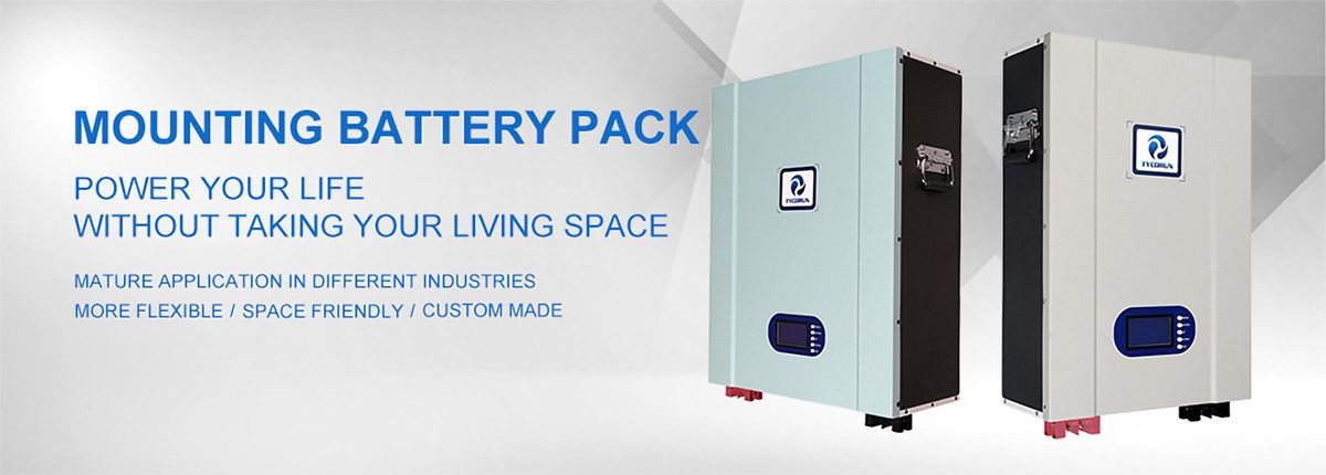 TAKOMABATTERY Wall Power lithium ion Batteries